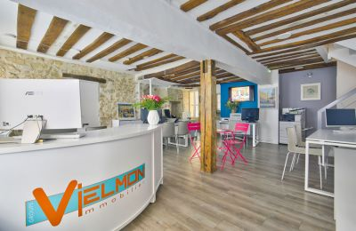 Agence Vielmon Immobilier